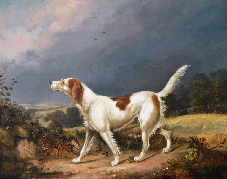 Early 19th Century sporting dog oil painting of a setter in a landscape  - Painting by Francis Calcraft Turner