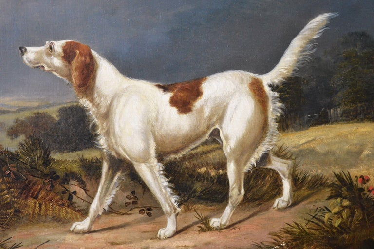 Early 19th Century sporting dog oil painting of a setter in a landscape  - Victorian Painting by Francis Calcraft Turner