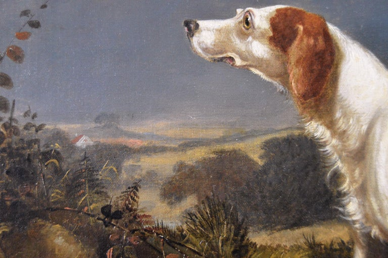 Early 19th Century sporting dog oil painting of a setter in a landscape  For Sale 1
