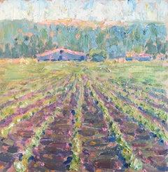 Vineyard & Farm House in Santa Barbara, California #0-89