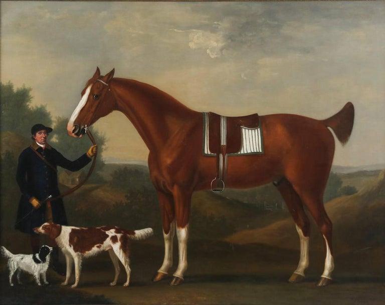 "John Beard, Groom to Captain Bertie, Holding ""Sportsman"" aged 10, his Bay Hunter"