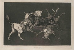 Lluvia De Toros - Original Etching by F. Goya - 1815/19