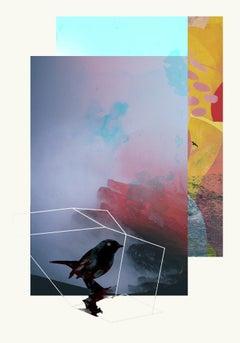 Birds 2 -Contemporary , Abstract, Gestual, Street art, Pop, Modern, Geometric