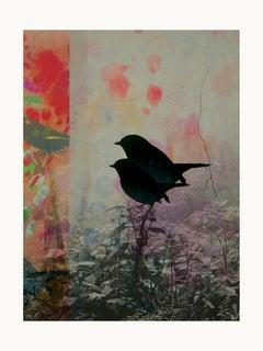 birds  - Contemporary, Abstract, Modern, Pop art, Surrealist, Landscape