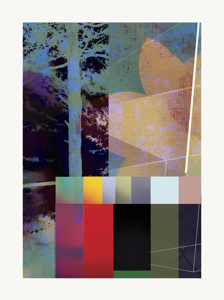 Color & forest-Contemporary, Abstract, Expressionism, Modern, Pop art, Geometric - Mixed Media Art by Francisco Nicolás