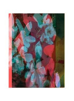 flower6-Contemporary , Abstract, Gestual, Street art, Pop art, Modern, Geometric