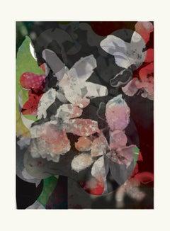 flower9-Contemporary , Abstract, Gestual, Street art, Pop art, Modern, Geometric