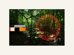 Forest - Contemporary, Abstract, Minimalism, Modern, Surrealist, Landscape