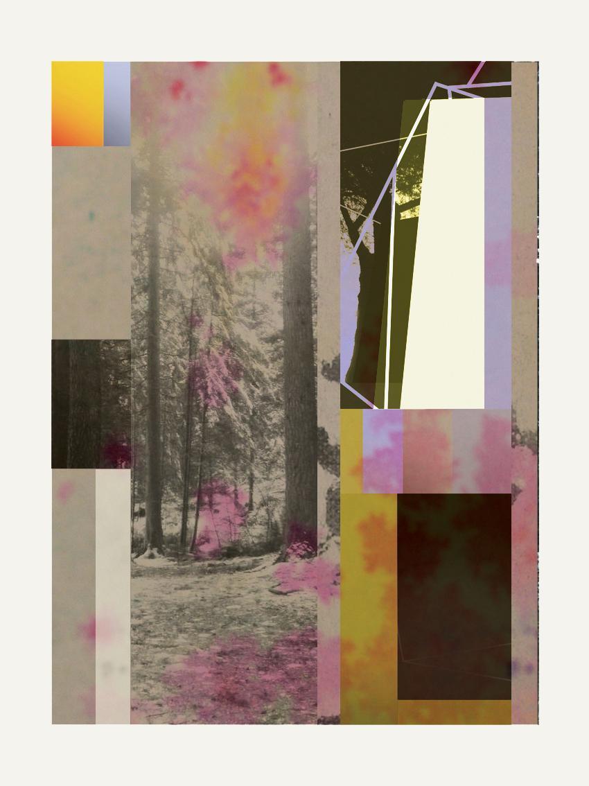 Forest XIV - Contemporary, Abstract, Modern, Pop art, Surrealist, Landscape