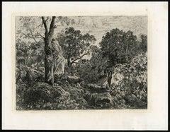 Foret de Fontainebleau.