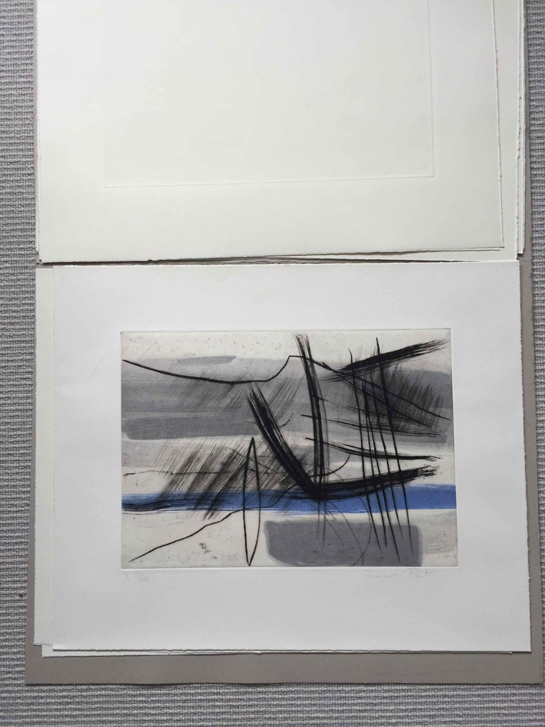 Mountain 4: Editioned Engraving with Unique Hand Painting by François Pont For Sale 5