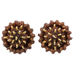 Francoise Montague Clip Earrings Brown Resin Brass Studs