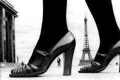 Paris Show and Eiffel Tower A