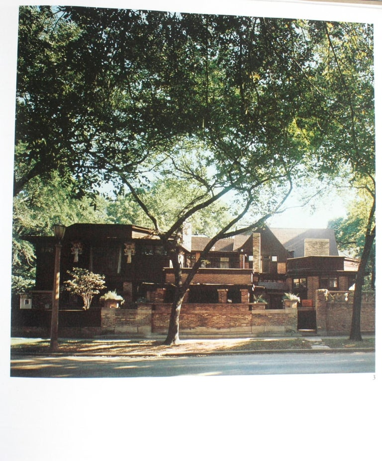 Paper Frank Lloyd Wright by Marco Dezzi Bardeschi For Sale