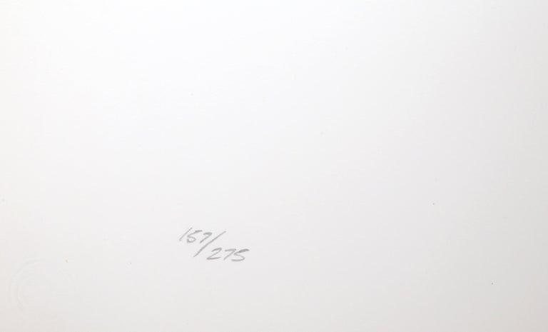 Race, Op Art Screenprint by Frank Rowland For Sale 4