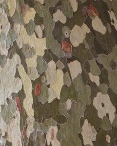 """Camouflage I ( 60 x 48"""" / 152 x 122cm )"""