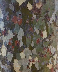 """Camouflage III ( 40 x 32"""" / 102 x 81cm )"""