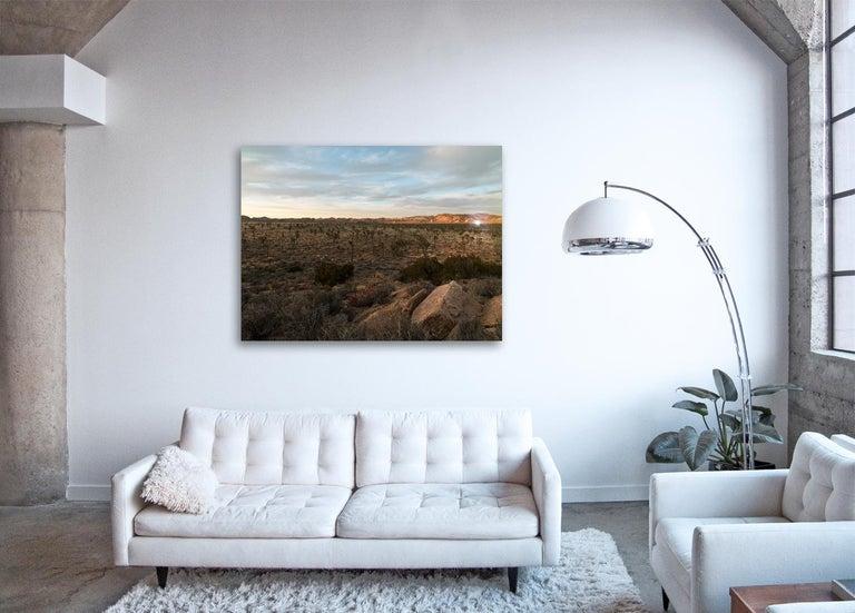 Desert Daze ( 48 x 64