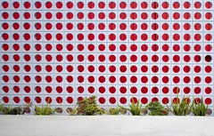 LA Parking - large format photograph of midcentury architectural elements framed