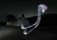Project 12:31 - long exposure light drawing recreating the human form