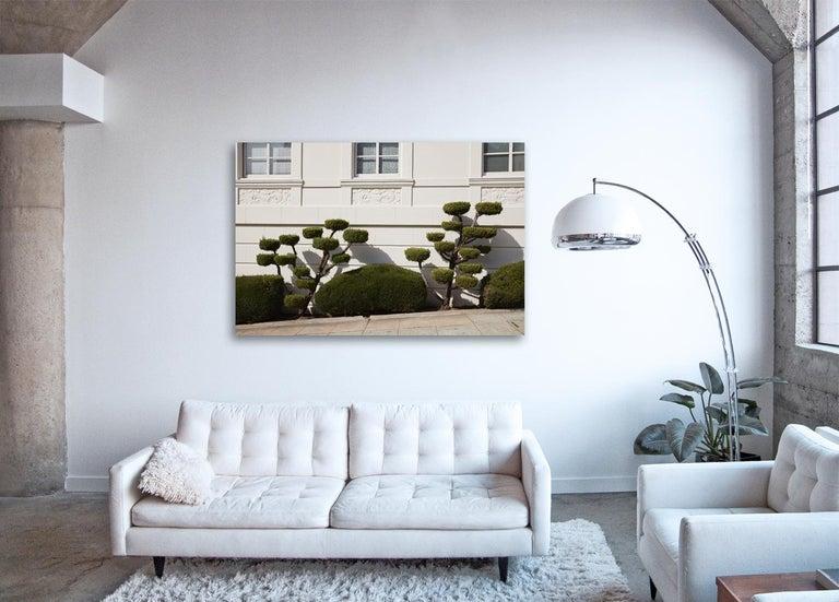 Topiary II ( 27 x 40