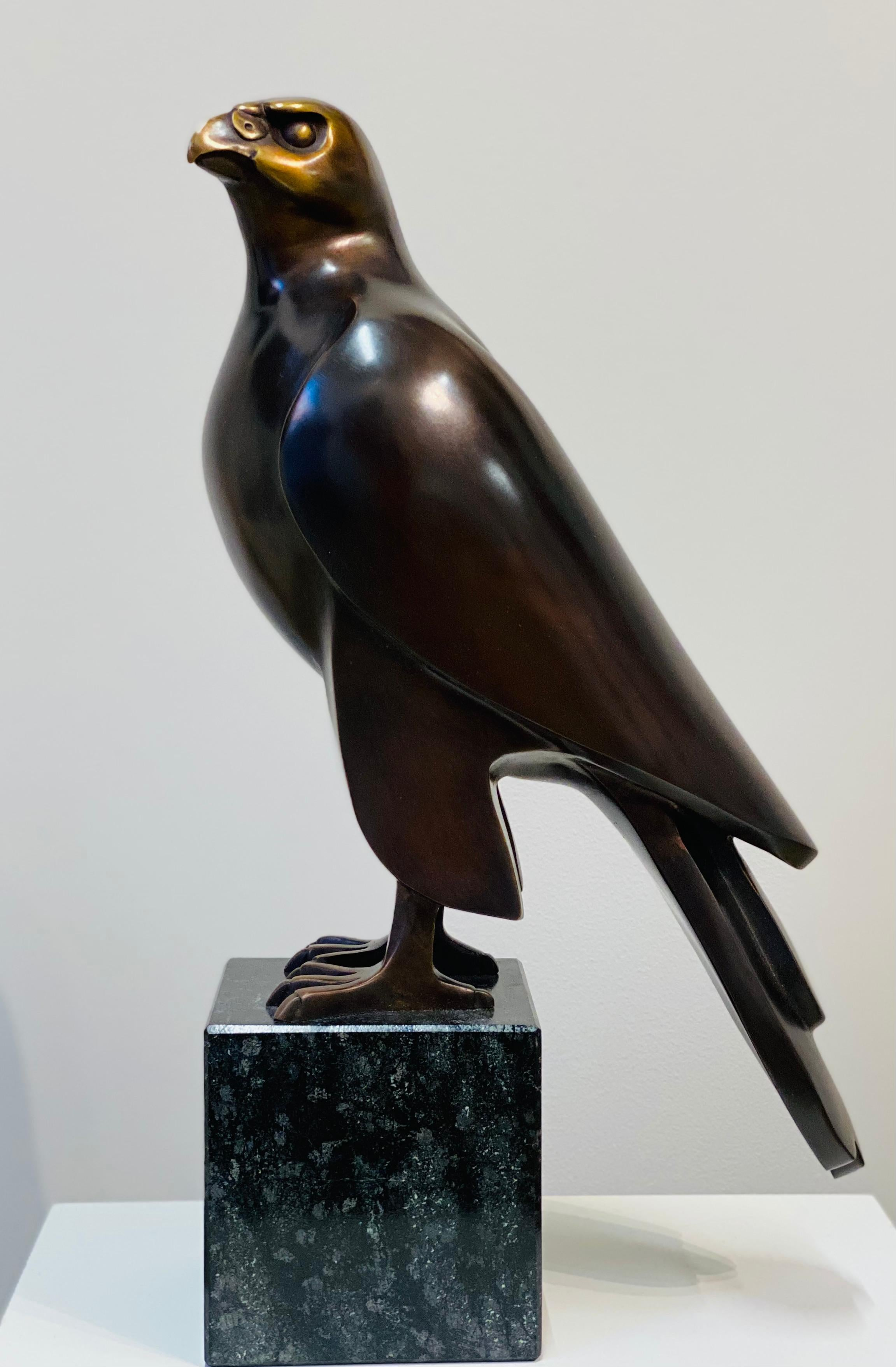 Falcon- 21st Century Dutch Bronze  Sculpture of a Falcon