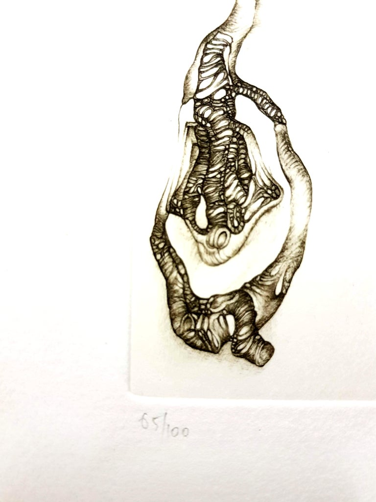 Fred Deux - Grey Surrealism III - Signed Original Etching - Gray Still-Life Print by Fred Deux