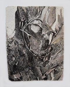 Alga Aligata No. 1 - seaweed kelp oceanic abstracted work on paper