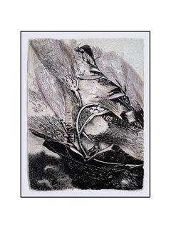 Alga Aligata No. 3- seaweed kelp oceanic abstracted work on paper