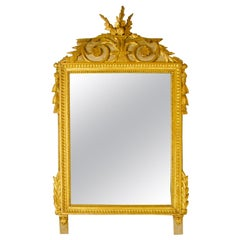 French 18th Century Louis XVI Giltwood Wall Mirror or Trumeau