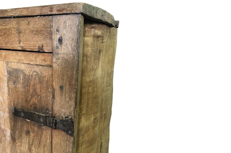 French 18th Century Tree Trunk Armoire For Sale 4