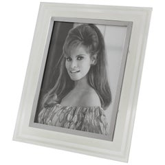 French 1940s Frosted Glass Picture Frame