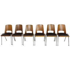 French 1960s Design Set of Six Chairs by Baumann