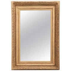 French 19th Century Gold Gilt Frame with Mirror