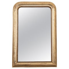 French 19th Century Gold Gilt Louis Philippe-Style Mirror