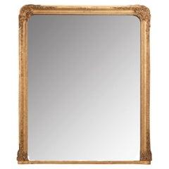 French 19th Century Gold Gilt Mirror