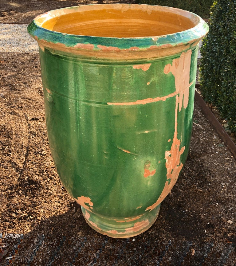 It's true that we have a thing for green-glazed 19th century pots, and this one from Apt in the South of France is a beauty. One of three that we currently have in stock (see CPO #1045 and CPO #1036), it is glazed in an ochre color on the inside and