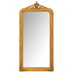 French 19th Century Louis Philippe Period Giltwood Mirror