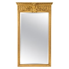 French 19th Century Louis XIV Style Giltwood Mirror