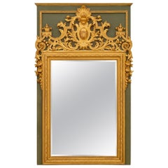 French 19th Century Louis XIV St. Polychrome and Giltwood Mirror