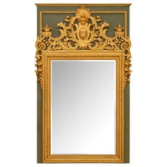 French 19th Century Louis XIV Style Polychrome and Giltwood Mirror