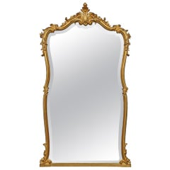 French 19th Century Louis XV Style Giltwood Mirror