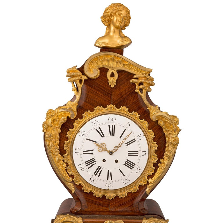 French 19th Century Louis XV St. Grandfather Clock For Sale 2
