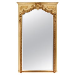French 19th Century Louis XV Style Patinated and Giltwood Mirror