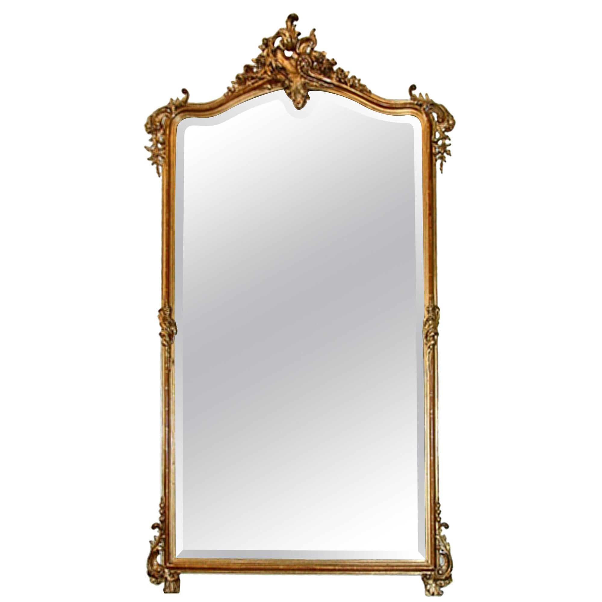 French 19th Century Louis XV Style Giltwood Mirror