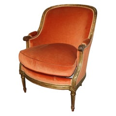 French 19th Century Louis XVI Bergere Chair