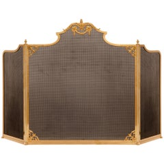 French 19th Century Louis XVI Style Ormolu and Metal Fire Screen