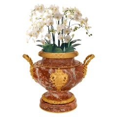 French 19th Century Louis XVI Style Rouge Royale Marble and Ormolu Planter
