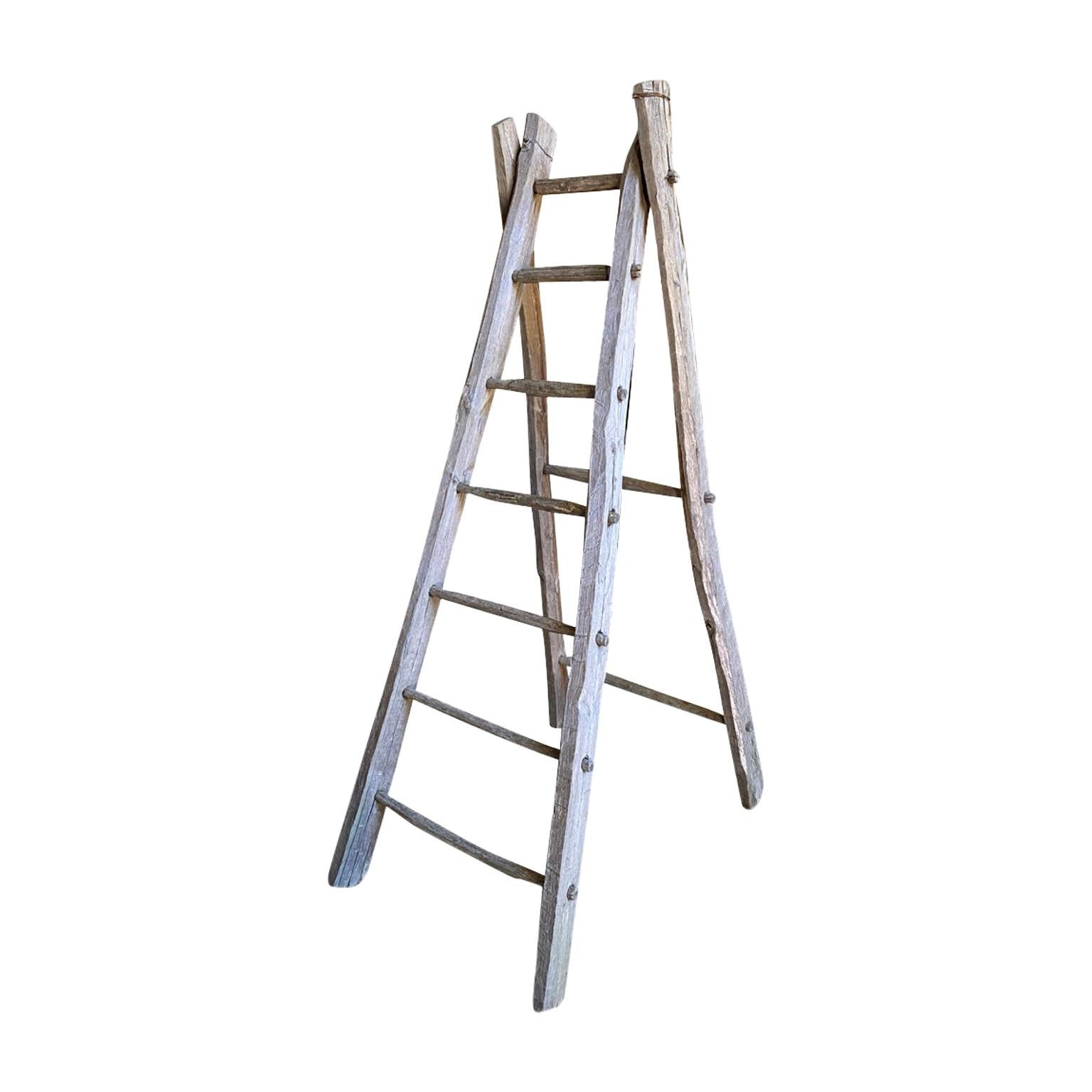 French 19th Century Orchard Ladder