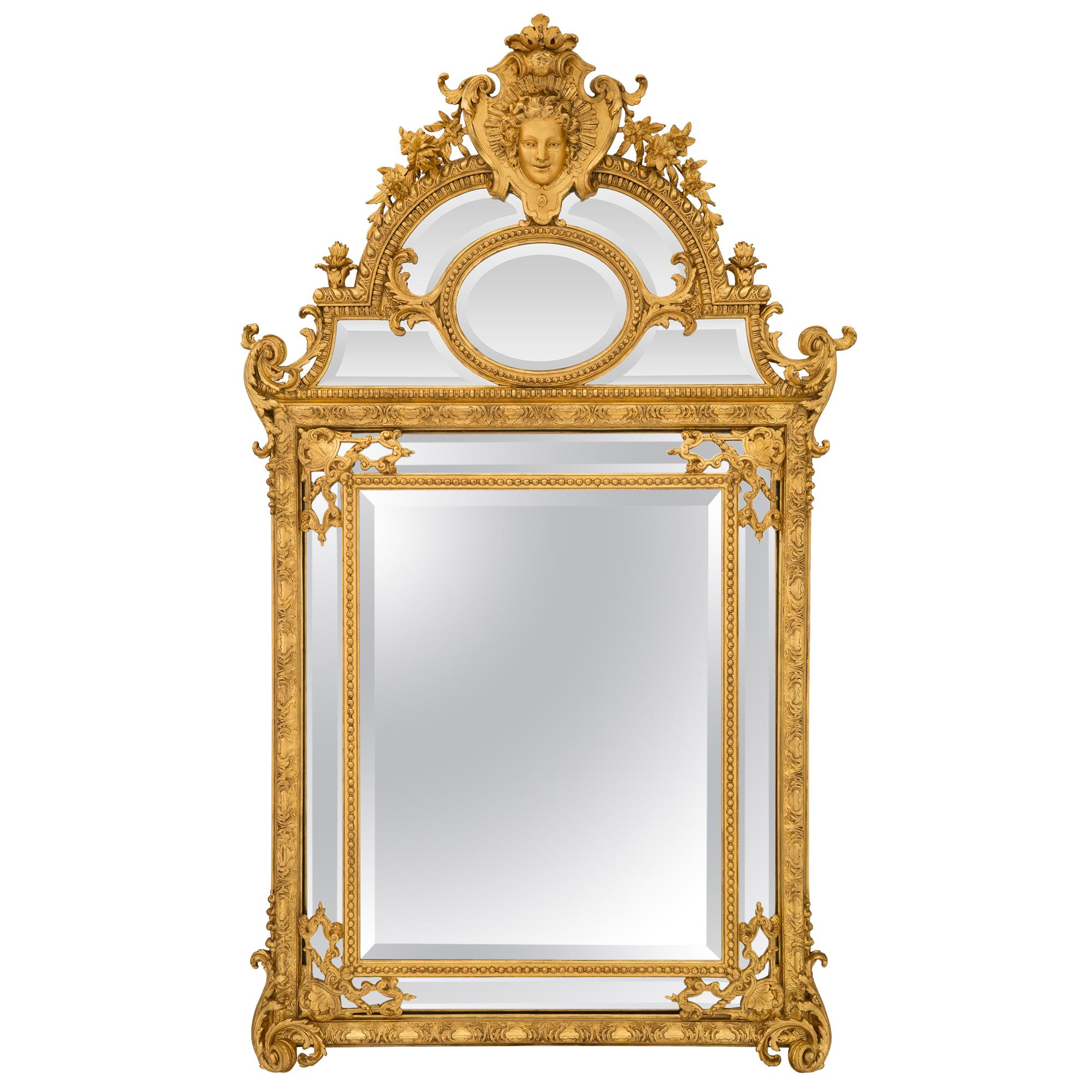 French 19th Century Regence Style Double Framed Giltwood Mirror